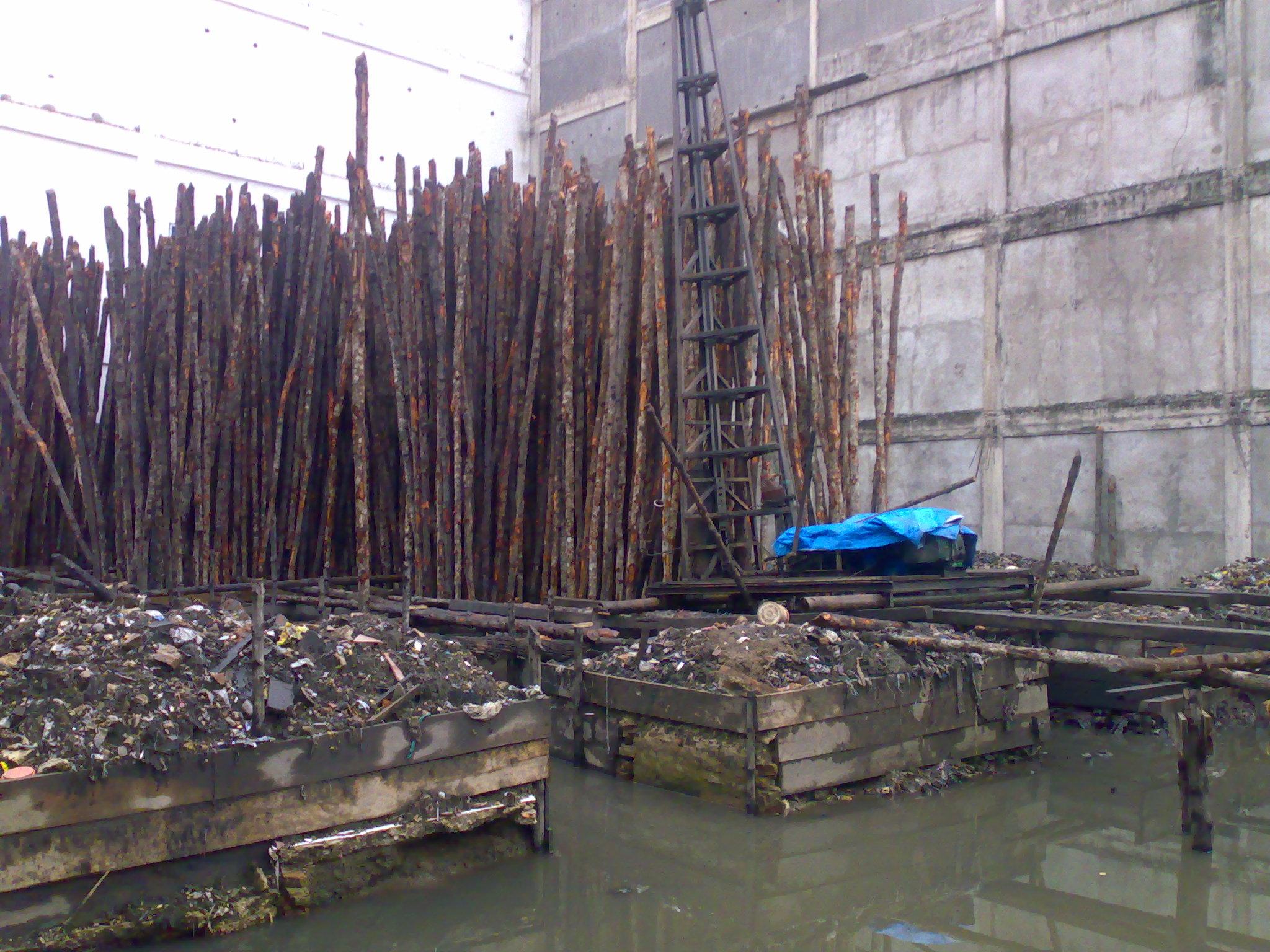 menyoal kelayakan cerocok kayu science and civil